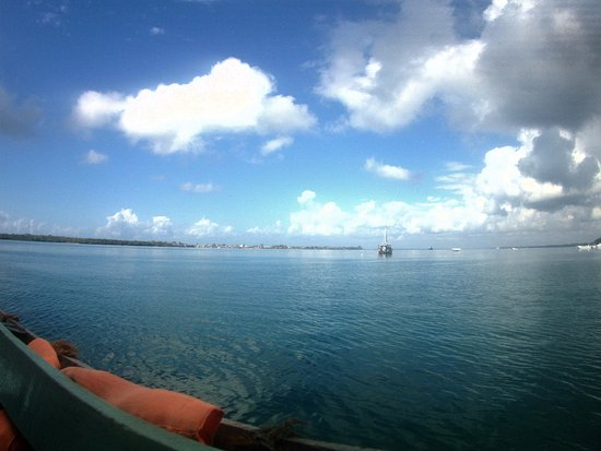 Shimoni, Kenia: View from my dive boat