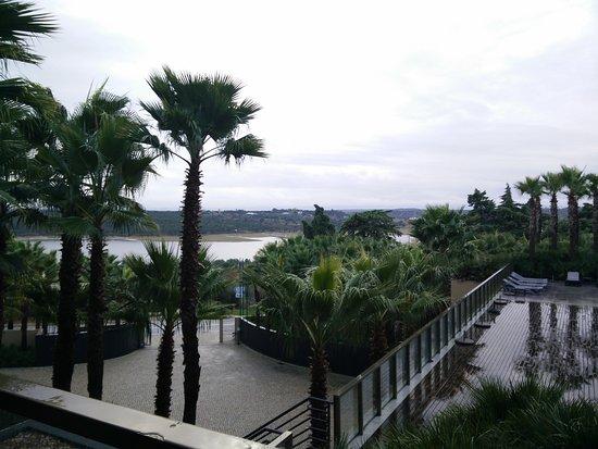 Montargil, Portugal: IMG_20161125_083921_large.jpg