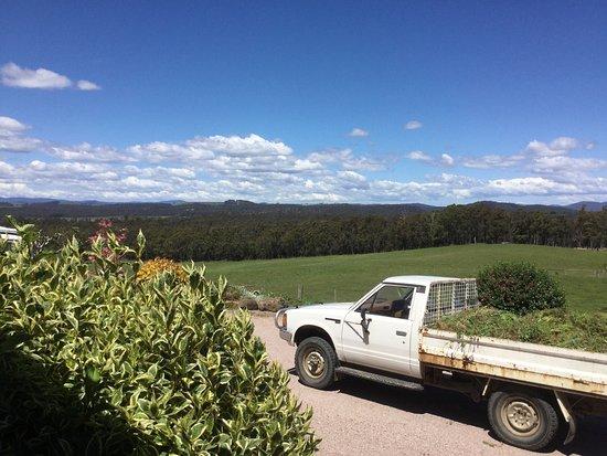 Latrobe, Australia: photo1.jpg