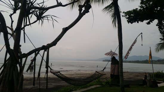 Pekutatan, Indonesia: View from Pool Area looking out to ocean at low tide