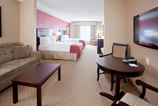 هوليداي إن اكسبرس هوتل آند سويتس: Double Bed Suite