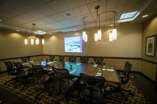 Hilton Garden Inn Dulles North: Boardroom