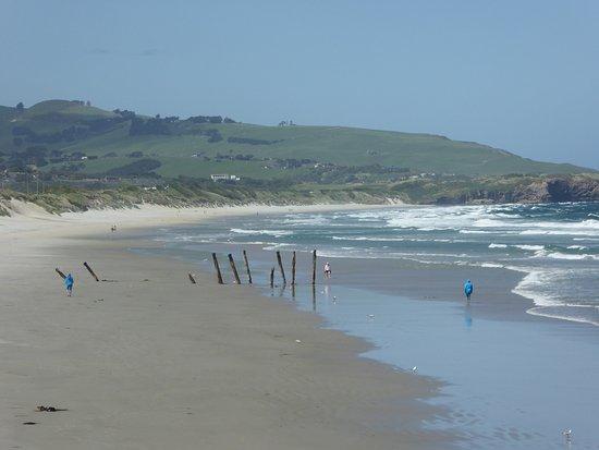 Dunedin Beach: Spaziergang am Strand