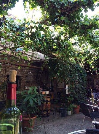 O Pino, Spain: Ambientes aconchegantes sob à sombra de videiras!!