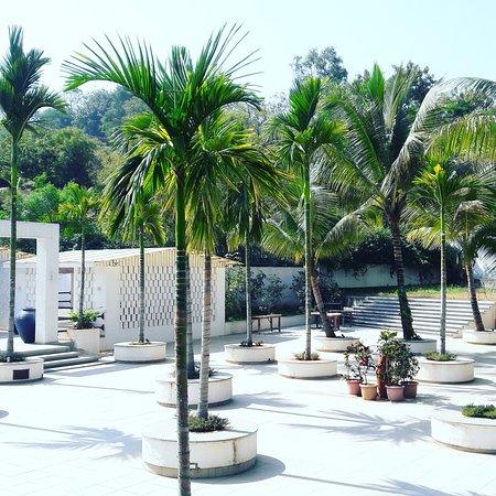 Ambrosia Resort & Spa Foto