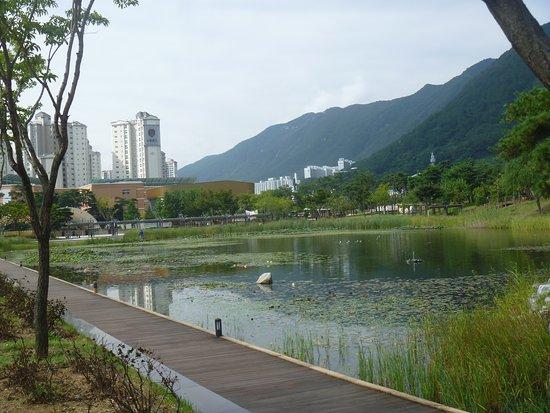 Yangsan Water Park
