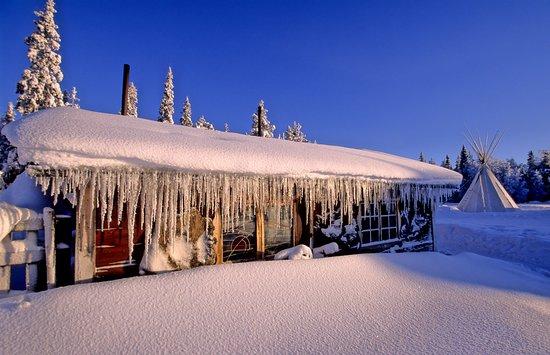 Norrbotten County, Sweden: Auf die Sauna am Abend freuen sich immer alle Gäste.