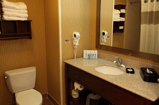 Bastrop, Teksas: Guest Bathroom