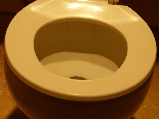 แมนเทกา, แคลิฟอร์เนีย: Dreck und Farbreste auf der Brille und im WC