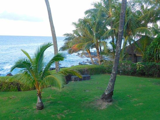Whalers Cove Resort Resmi