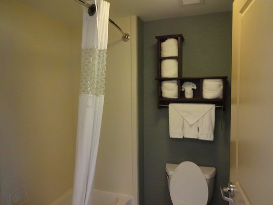 Hampton Inn & Suites Birmingham/280 East-Eagle Point: bathroom