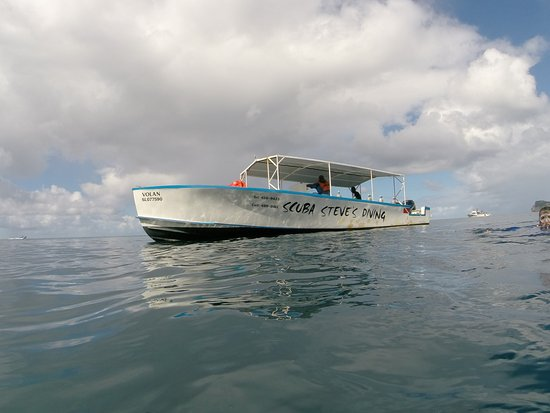 Scuba Steve's Diving Ltd.: Scuba Steve's Boat