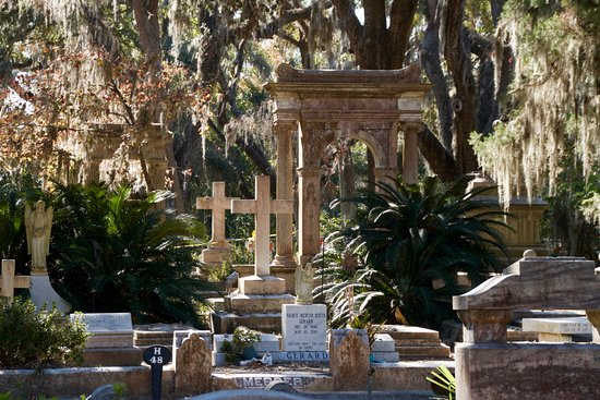 Savannah Bonaventure Dash Tours