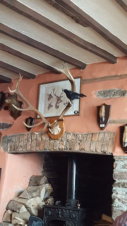 Dulverton, UK : view from my table - love the crows!