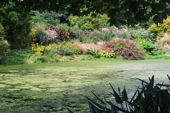 Bonython Estate Gardens: Across the lake
