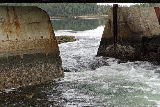 Brooksville, Мэн: Goose Falls - under the bridge