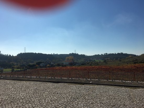 Anadia, Portugal: photo2.jpg