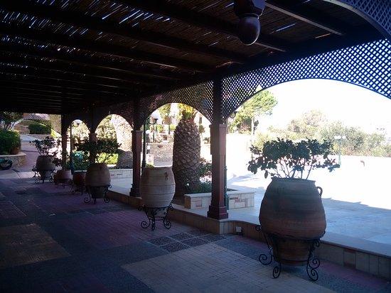 Crithonis Paradise Hotel: IMG_20161119_100325_large.jpg
