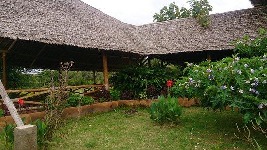 Lake Manyara National Park, Tanzania: Comfortable and friendly..