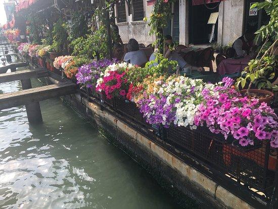 ristorante florida  venice