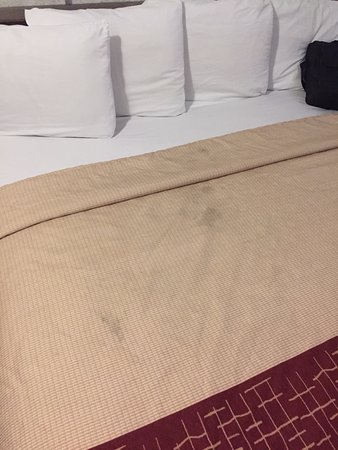 San Dimas, CA: This is my bedding when I came in from a long day out. Not very inviting.