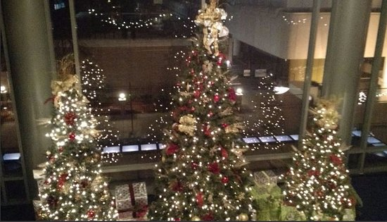 Hilton Chicago/Magnificent Mile Suites: Second Floor View Holiday Decorations