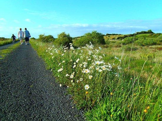 Claremorris, Ιρλανδία: Walking on Clogher Bog Loop Walk.