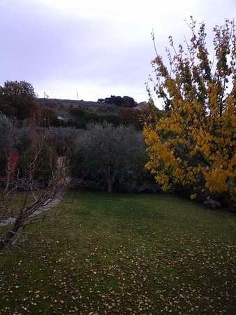 Podere Vigliano Photo