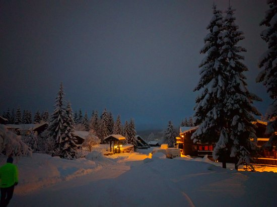 Comune di Trysil, Norvegia: Drive way leading to some of the accommodation lodges