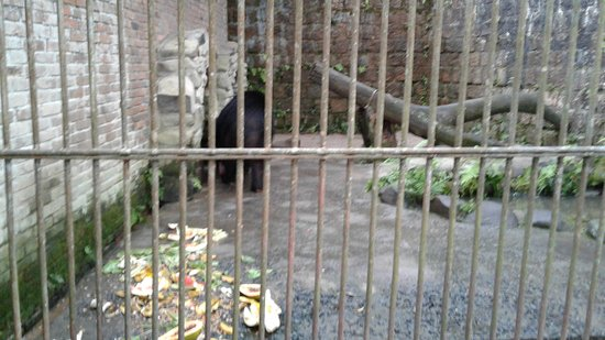 Sapucaia Do Sul, RS: Parque Zoológico