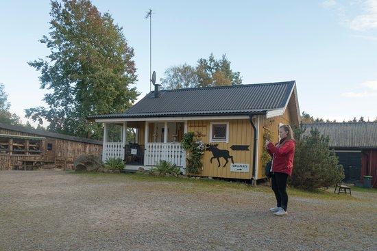 Kosta, Zweden: Gelände