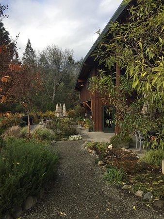 Wooldridge Creek Winery: photo0.jpg