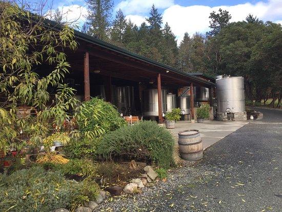 Wooldridge Creek Winery: photo1.jpg