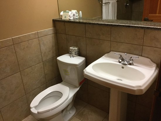 Heathman Lodge: Basin and toilet.