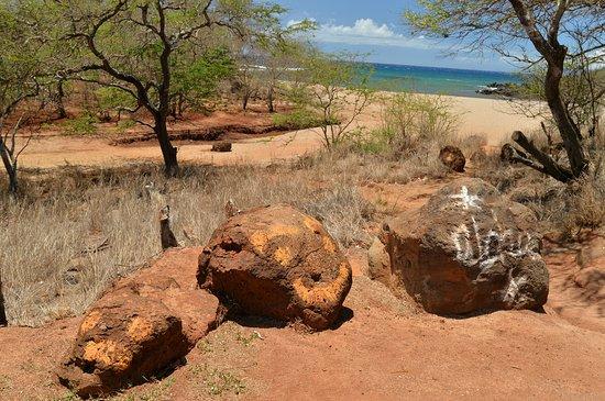 Molokai, Hawái: ビーチの入り口にある目印です。