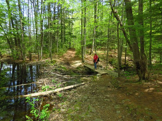 Orris Falls Trail in South Berwick Maine
