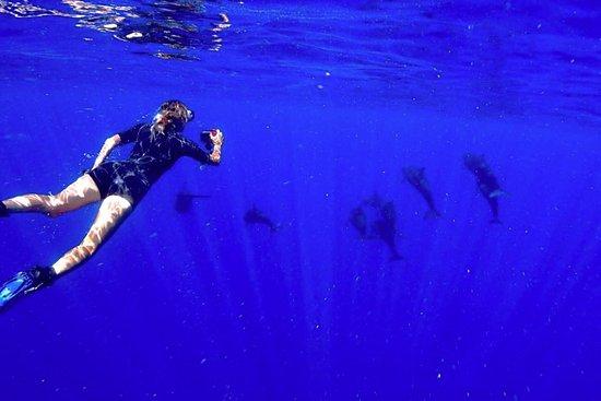 Kadena-cho, Japan: Instrutora Andréa Ramos e os Golfinhos - Aloha Divers Okinawa