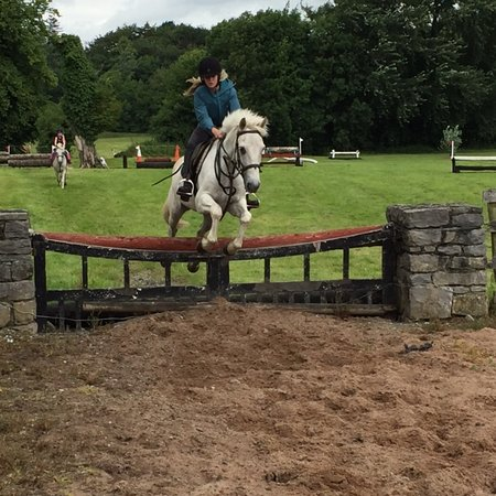 Flowerhill Equestrian Centre: Final jump into the ring