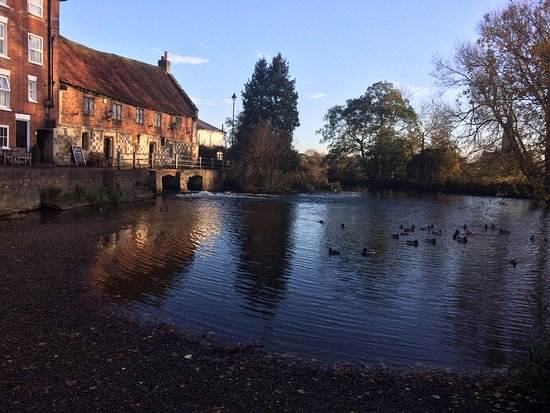Harnham, UK: Mill pond with local residents