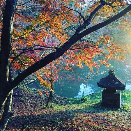 Yujaku Park