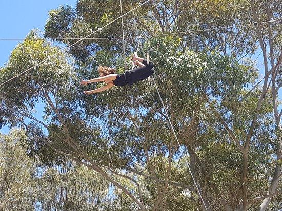 Homebush, Australien: Circus Arts Sydney