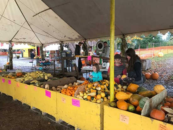 Boring, Oregón: Liepold Farms pumpkins, gords, apples and veggies