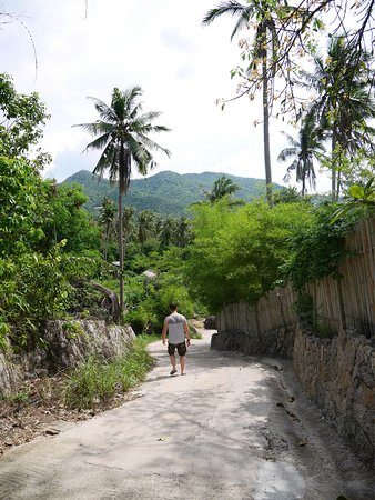 The Rocks Villas: The road up is not too bad.. it's steep but only in short sections and only for a few minutes in