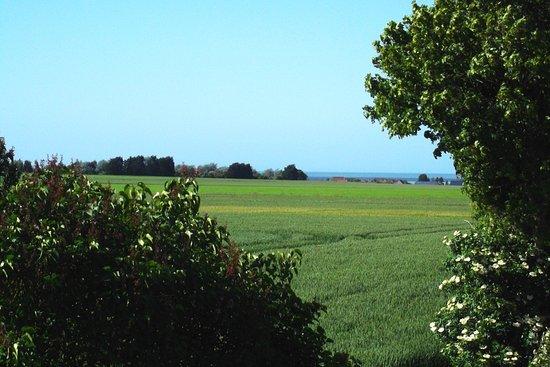 Meuvaines, Fransa: on voit l'horizon