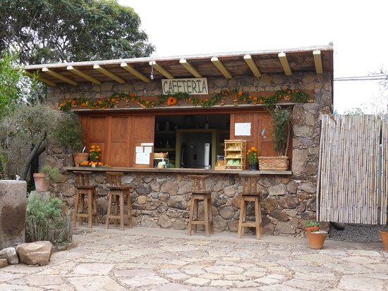 El Charco del Ingenio: The cafe - great breakfast!