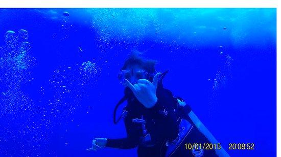 Jack's Diving Locker: Hang loose - my 14 year old daughter - 45 feet below