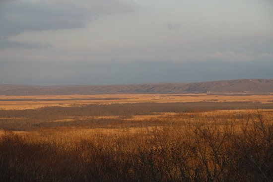 湿原鶴居展望台