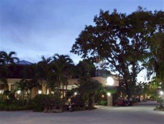 Palm Garden: photo0.jpg