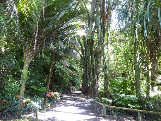 New Plymouth, New Zealand: gute Spazierwege im Grünen
