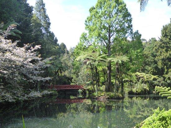 New Plymouth, New Zealand: Romantischer Weiher im Park